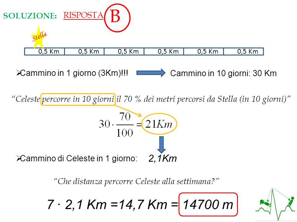 RISPOSTAB. SOLUZIONE: Stella. 0,50,5 Km. 0,50,5 Km. 0,50,5 Km. 0,50,5 Km. 0,50,5 Km. 0,50,5 Km. Cammino in 1 giorno (3Km)!!!