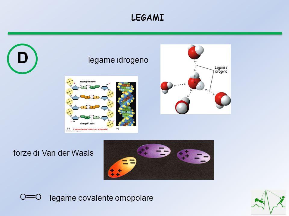 D LEGAMI legame idrogeno forze di Van der Waals O O