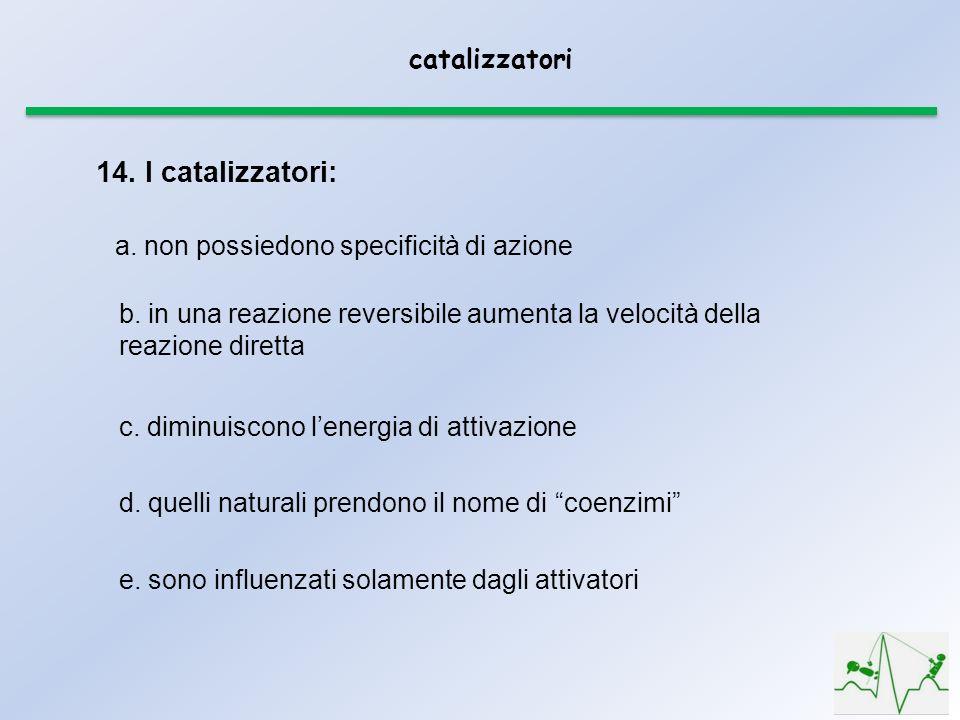 14. I catalizzatori: catalizzatori