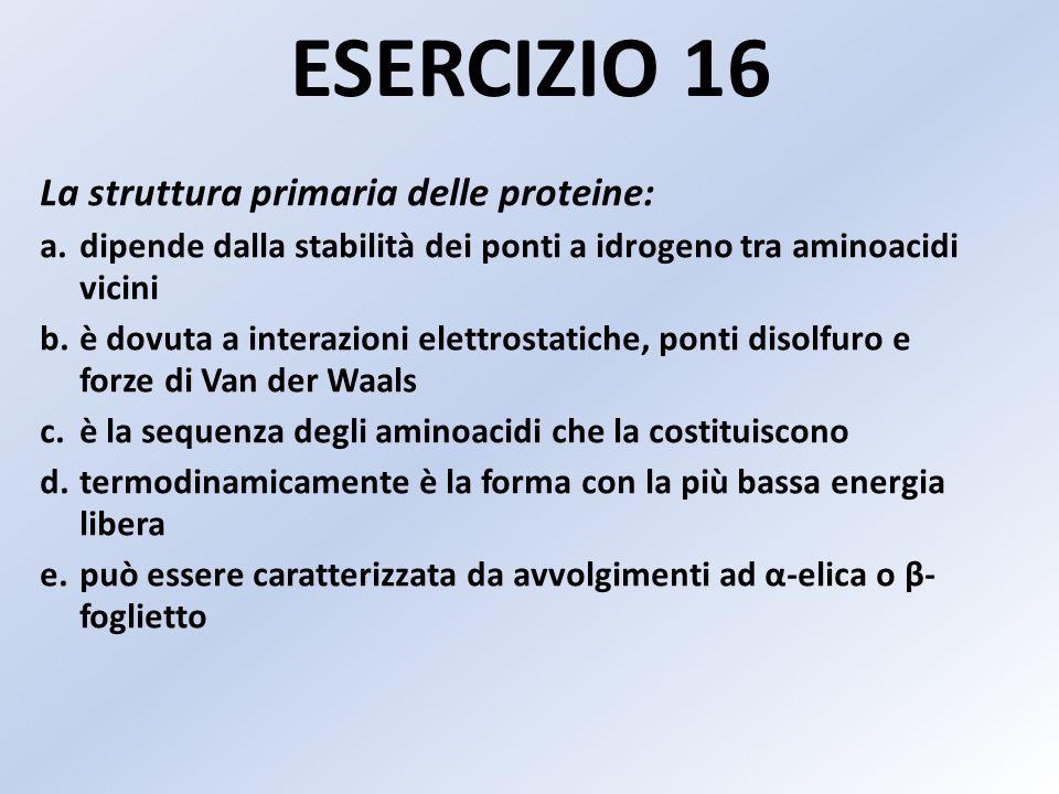 ESERCIZIO 16 La struttura primaria delle proteine: