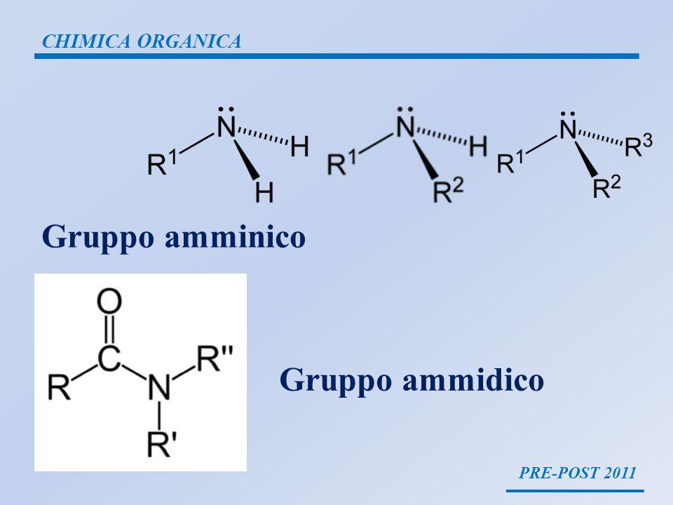 CHIMICA ORGANICA Gruppo amminico Gruppo ammidico PRE-POST 2011