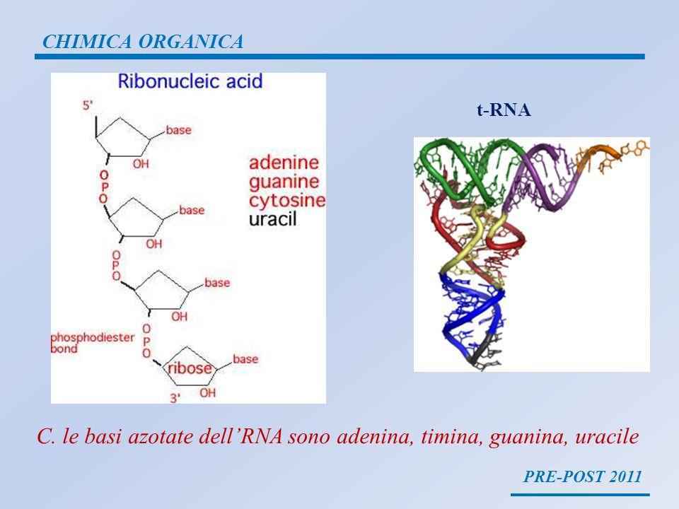 C. le basi azotate dell'RNA sono adenina, timina, guanina, uracile