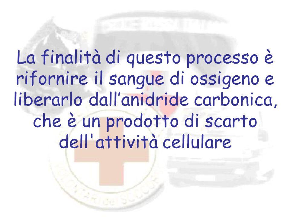 La finalità di questo processo è rifornire il sangue di ossigeno e liberarlo dall'anidride carbonica, che è un prodotto di scarto dell attività cellulare