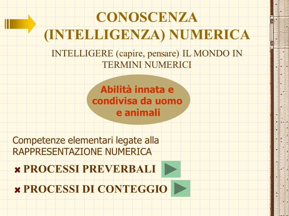 CONOSCENZA (INTELLIGENZA) NUMERICA