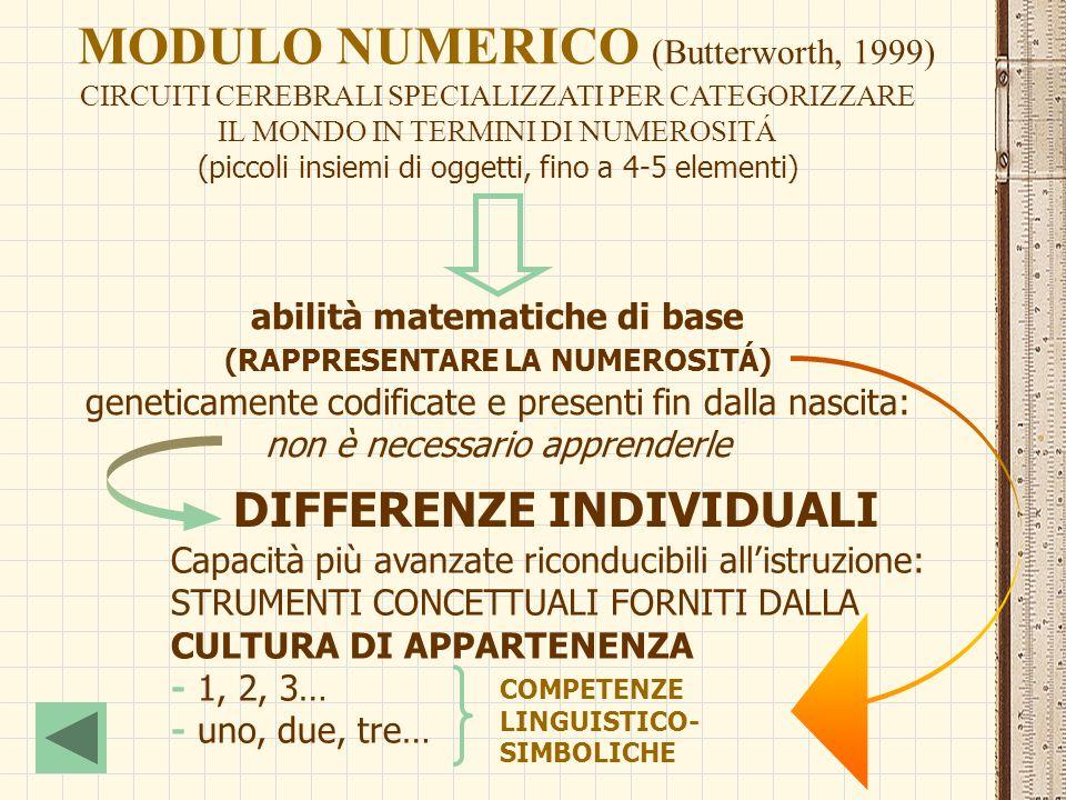 MODULO NUMERICO (Butterworth, 1999)