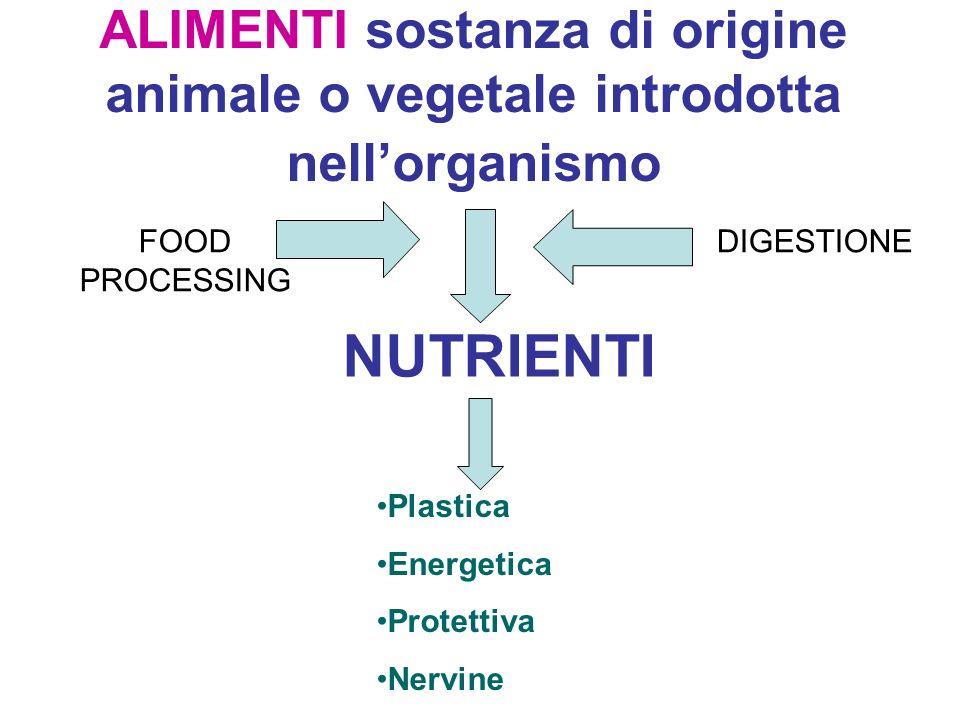 ALIMENTI sostanza di origine animale o vegetale introdotta nell'organismo