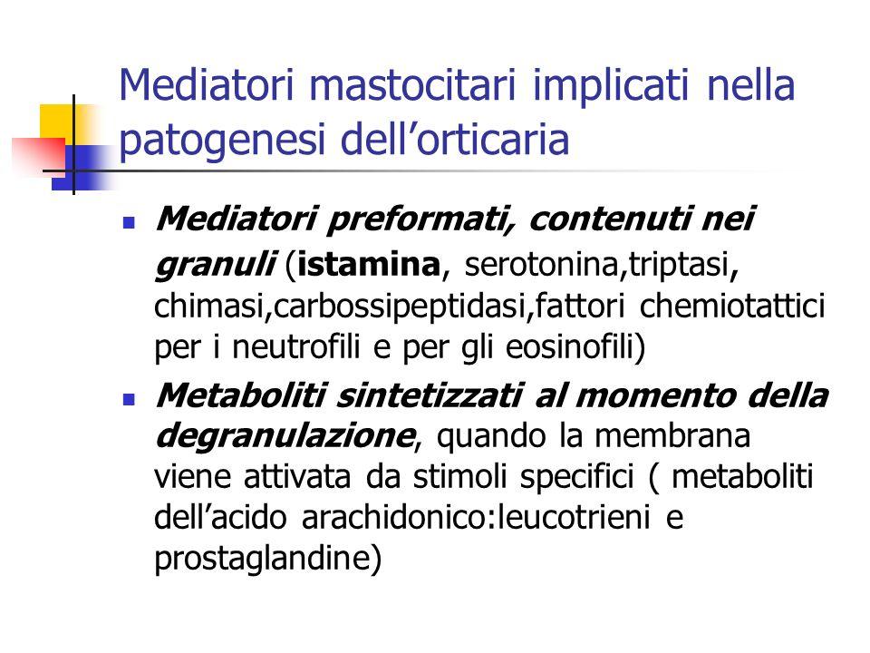 Mediatori mastocitari implicati nella patogenesi dell'orticaria