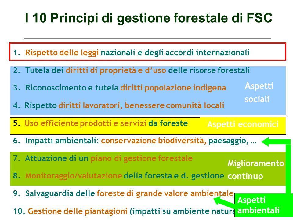 I 10 Principi di gestione forestale di FSC