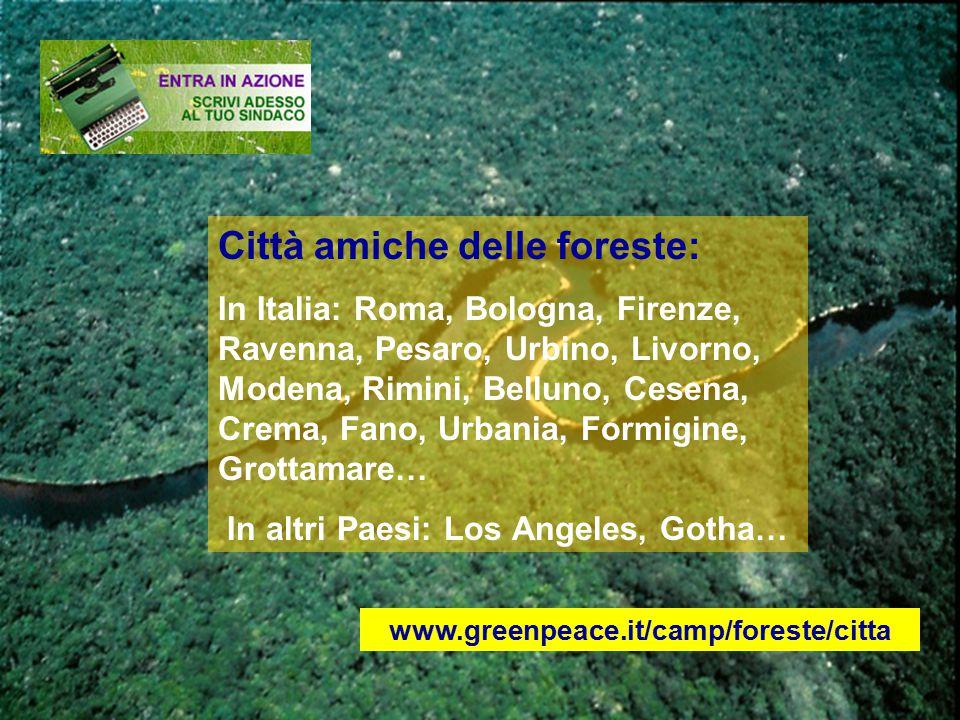 Città amiche delle foreste: