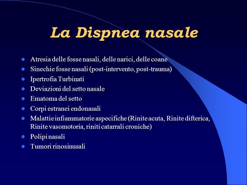La Dispnea nasale Atresia delle fosse nasali, delle narici, delle coane. Sinechie fosse nasali (post-intervento, post-trauma)