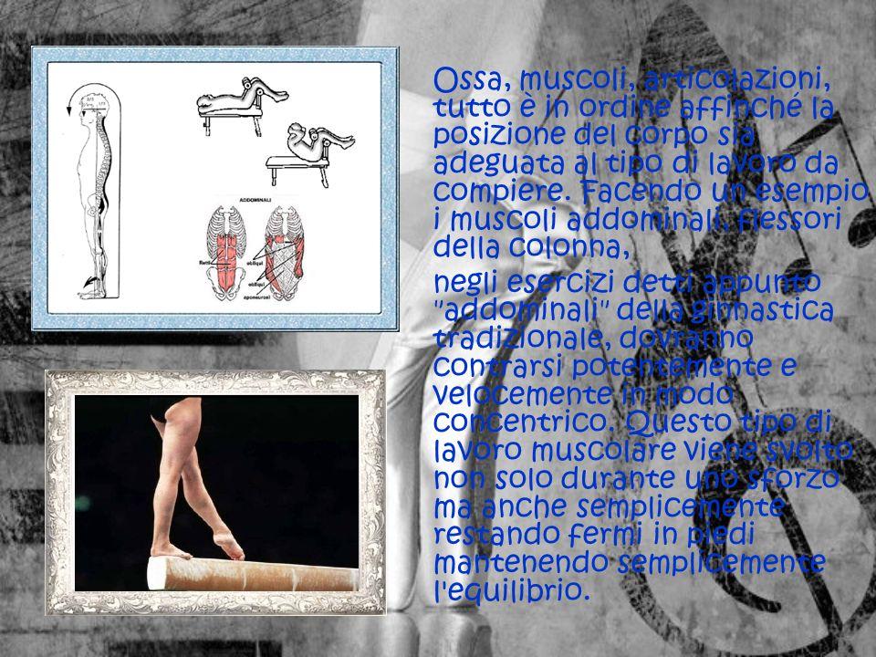 Ossa, muscoli, articolazioni, tutto è in ordine affinché la posizione del corpo sia adeguata al tipo di lavoro da compiere. Facendo un esempio i muscoli addominali, flessori della colonna,