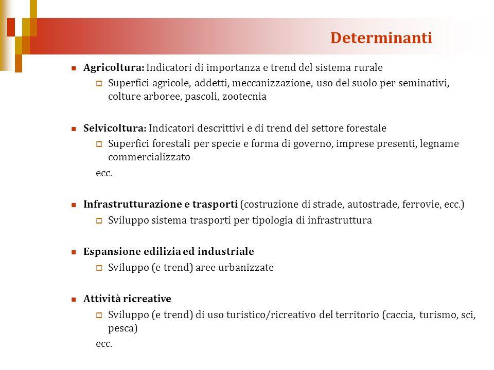 Determinanti Agricoltura: Indicatori di importanza e trend del sistema rurale.