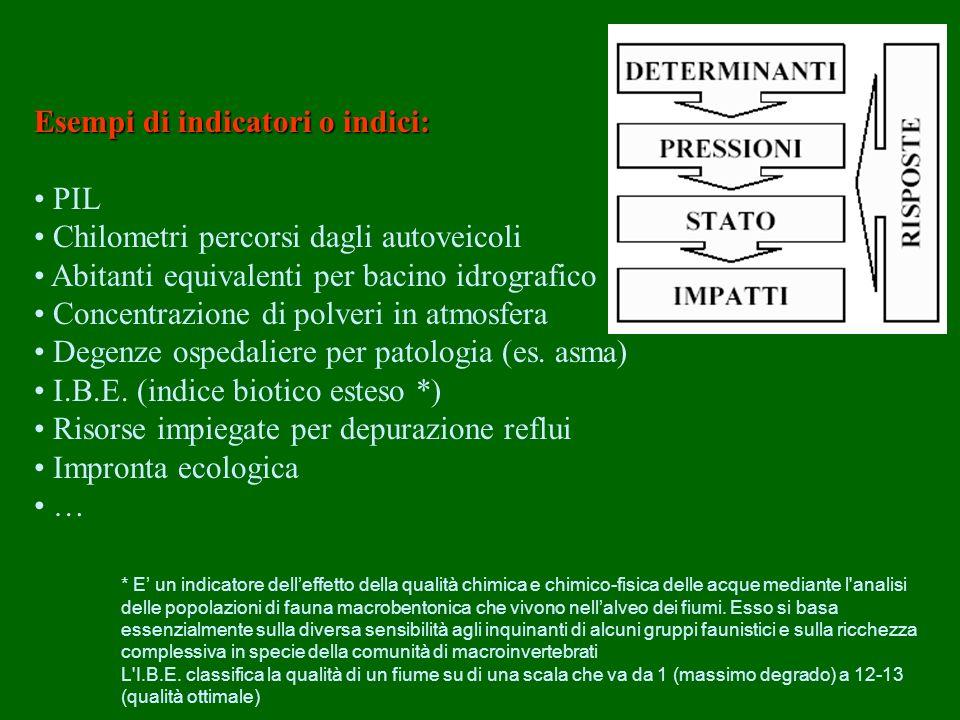 Esempi di indicatori o indici: • PIL