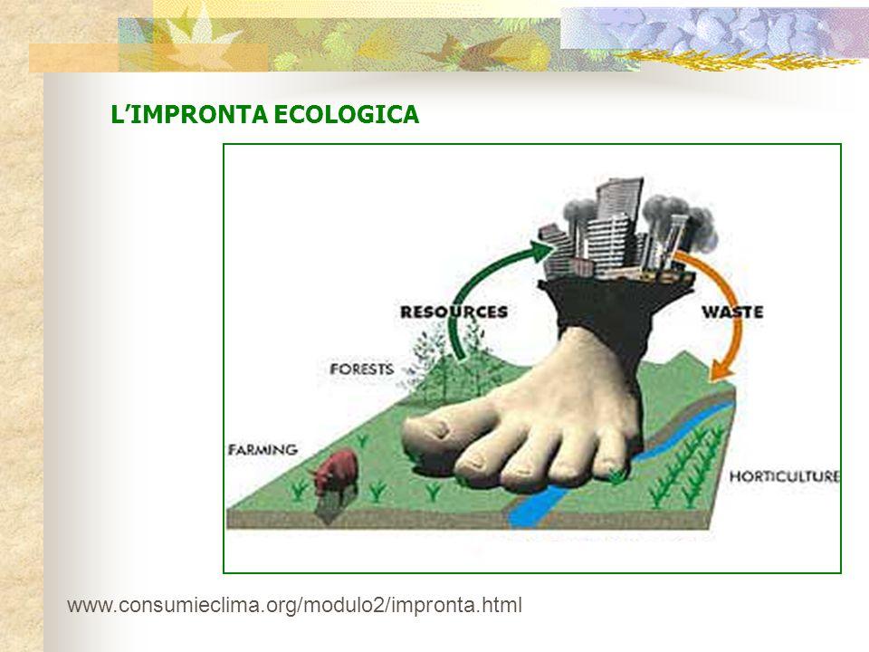 L'IMPRONTA ECOLOGICA www.consumieclima.org/modulo2/impronta.html