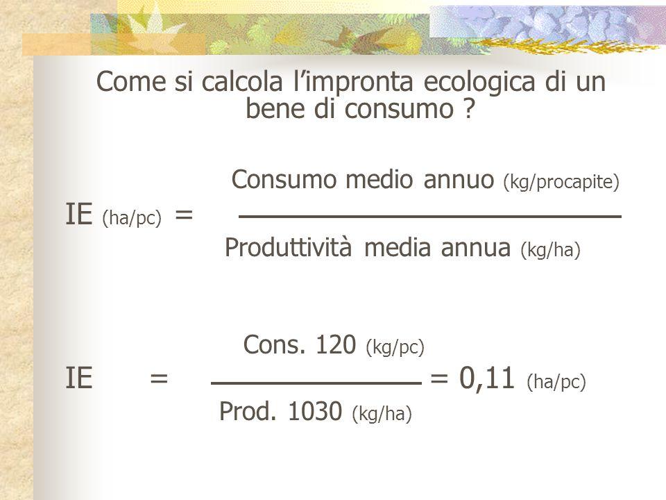 Come si calcola l'impronta ecologica di un bene di consumo
