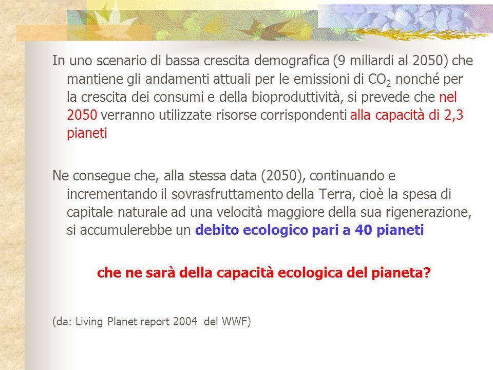 che ne sarà della capacità ecologica del pianeta