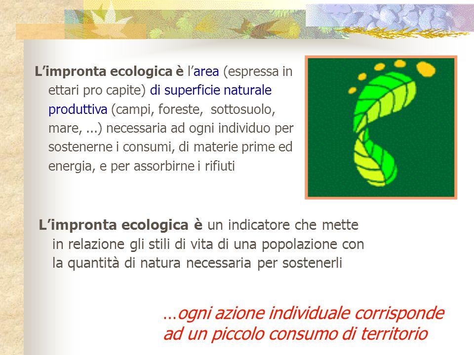 L'impronta ecologica è l'area (espressa in ettari pro capite) di superficie naturale produttiva (campi, foreste, sottosuolo, mare, ...) necessaria ad ogni individuo per sostenerne i consumi, di materie prime ed energia, e per assorbirne i rifiuti