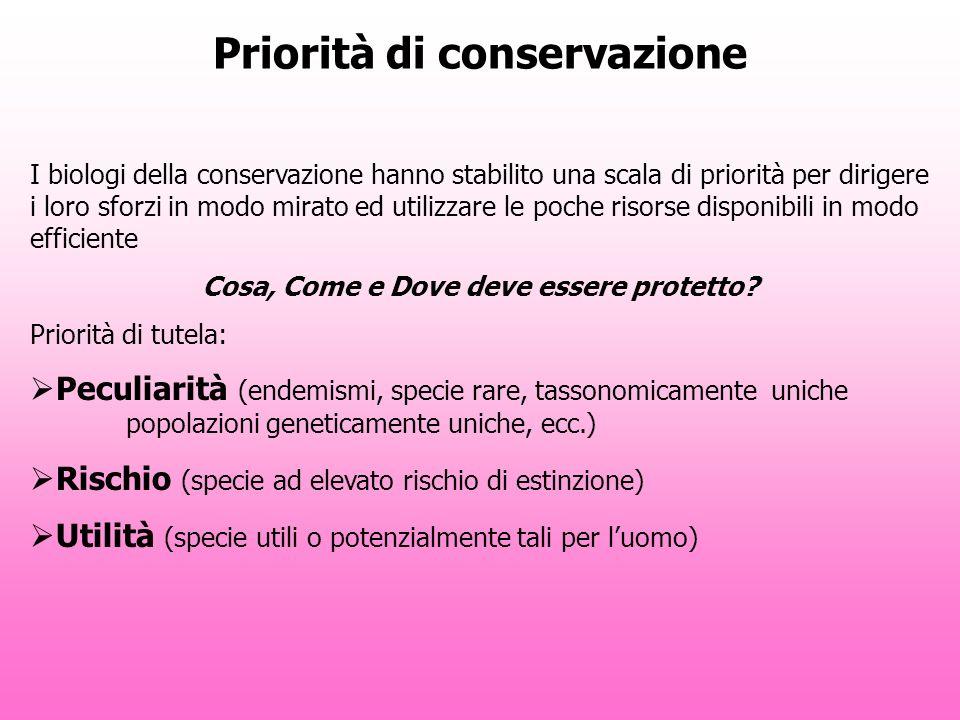 Priorità di conservazione