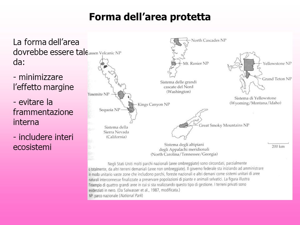 Forma dell'area protetta