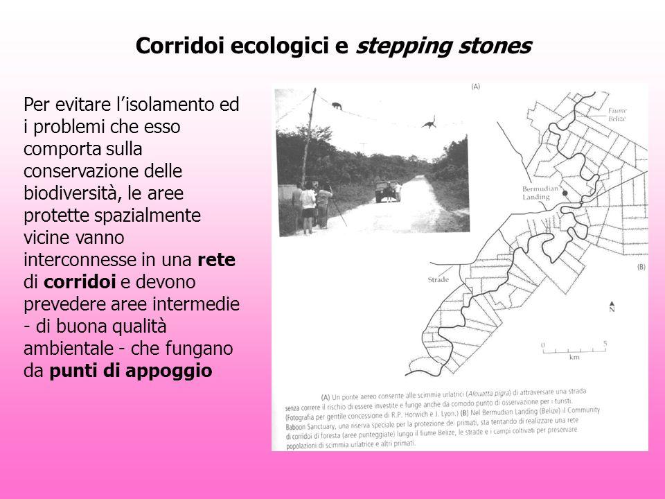Corridoi ecologici e stepping stones