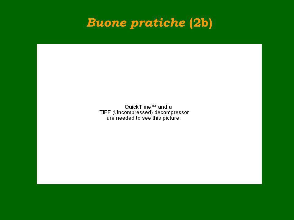 Buone pratiche (2b)