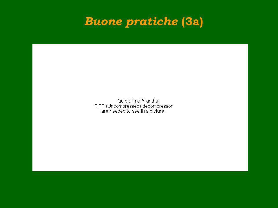 Buone pratiche (3a)