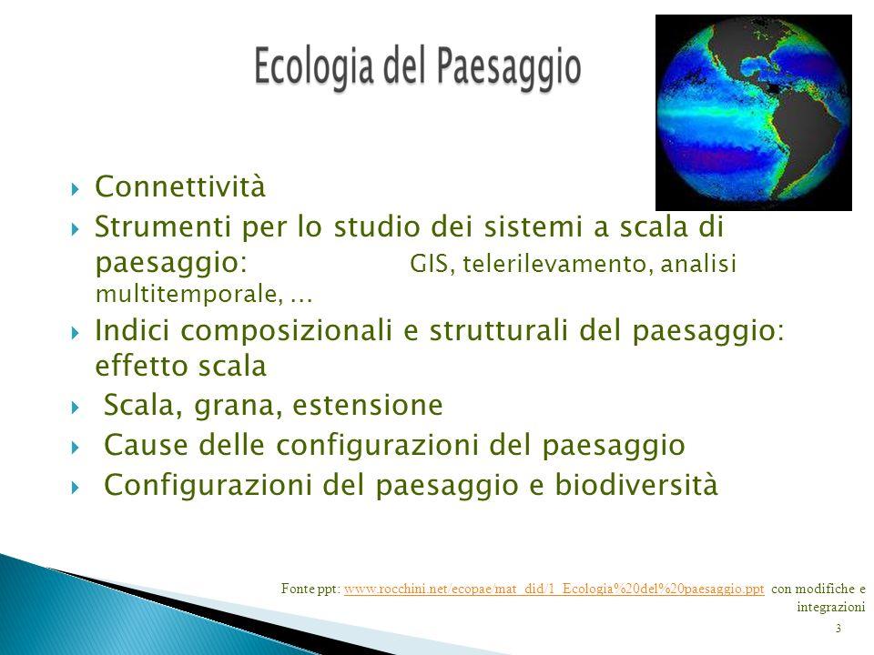 Indici composizionali e strutturali del paesaggio: effetto scala