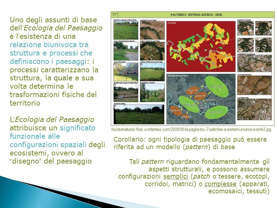 Uno degli assunti di base dell'Ecologia del Paesaggio è l'esistenza di una relazione biunivoca tra struttura e processi che definiscono i paesaggi: i processi caratterizzano la struttura, la quale a sua volta determina le trasformazioni fisiche del territorio