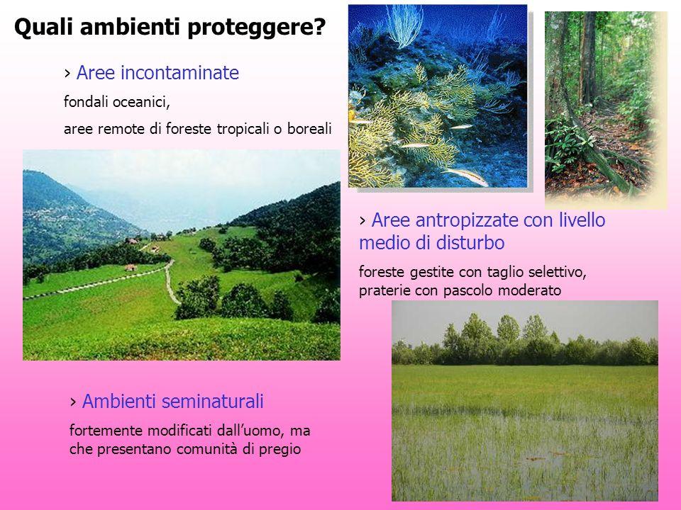 Quali ambienti proteggere