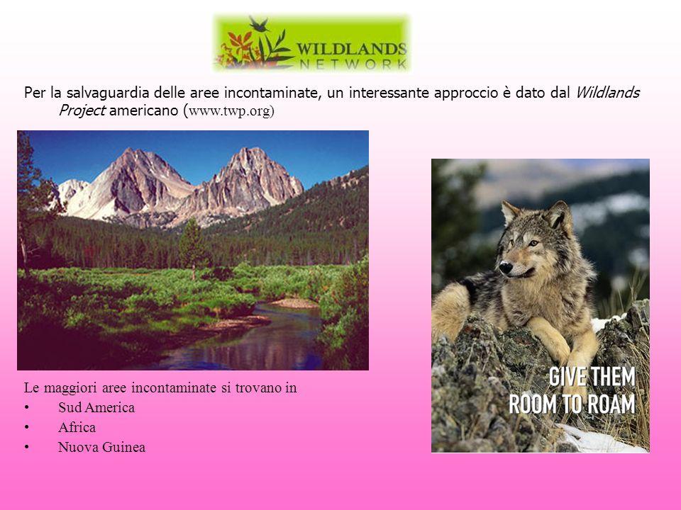 Per la salvaguardia delle aree incontaminate, un interessante approccio è dato dal Wildlands Project americano (www.twp.org)