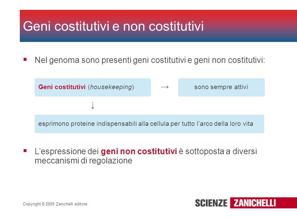 Geni costitutivi e non costitutivi