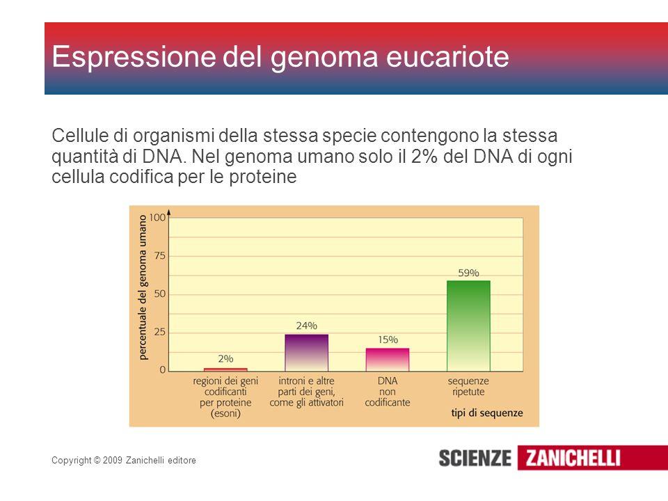 Espressione del genoma eucariote