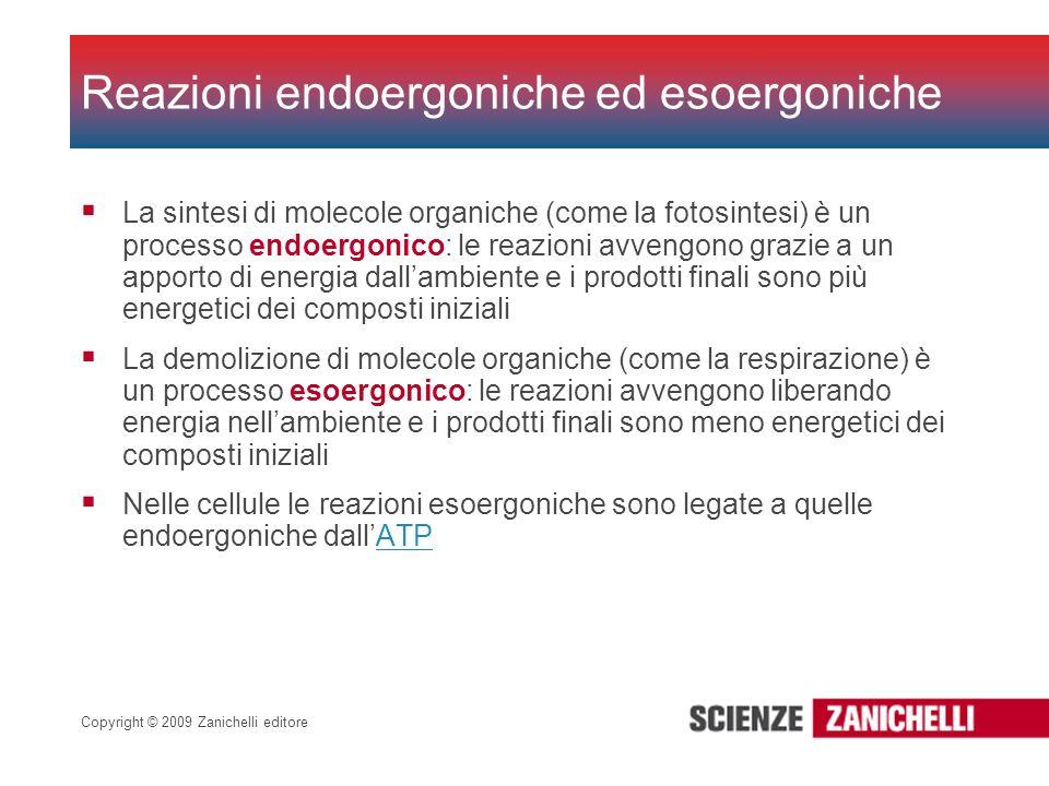 Reazioni endoergoniche ed esoergoniche