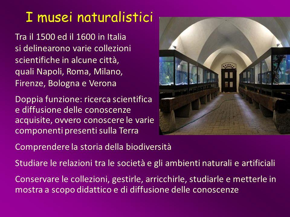 I musei naturalistici