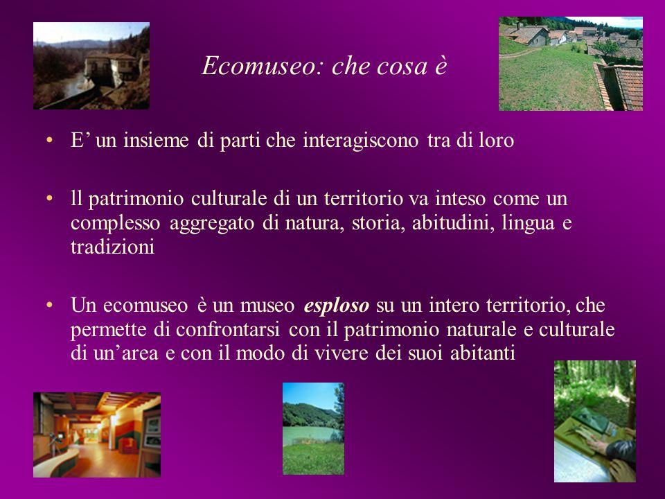 Ecomuseo: che cosa è E' un insieme di parti che interagiscono tra di loro.