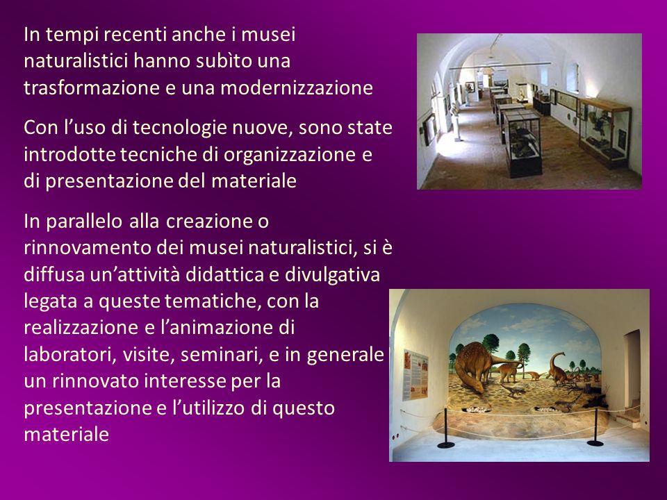 In tempi recenti anche i musei naturalistici hanno subìto una trasformazione e una modernizzazione