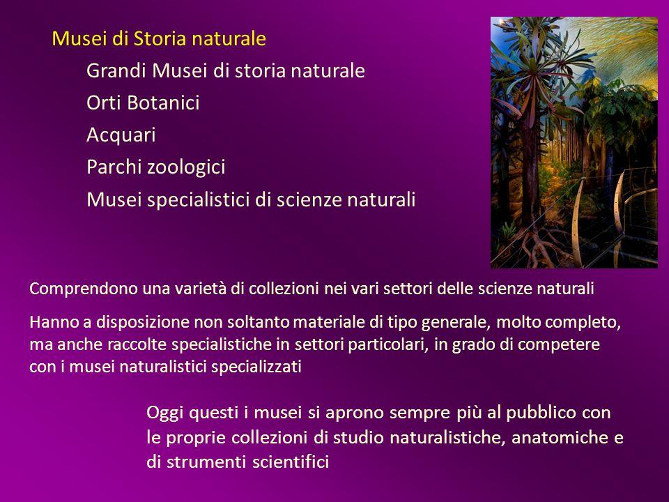 Musei di Storia naturale Grandi Musei di storia naturale Orti Botanici