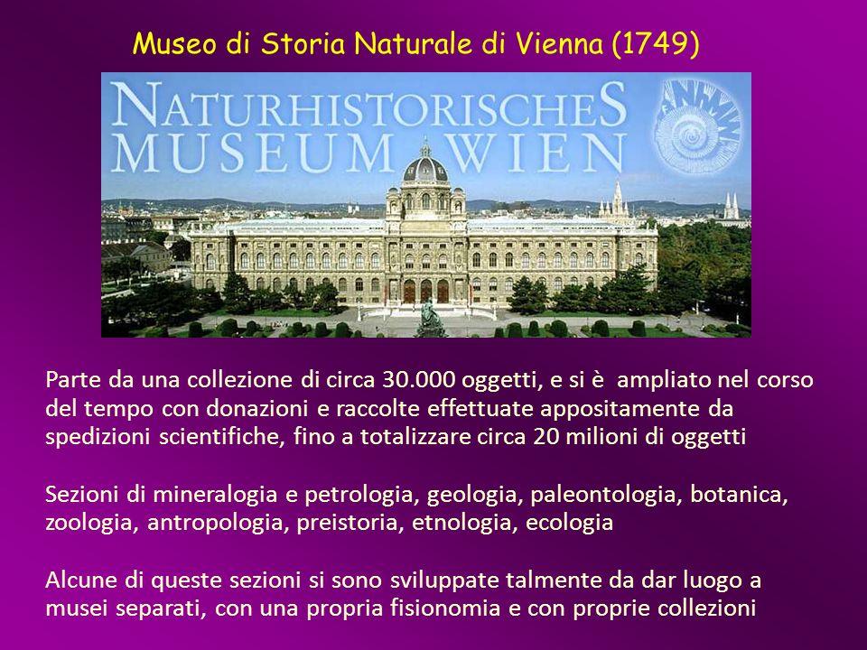 Museo di Storia Naturale di Vienna (1749)