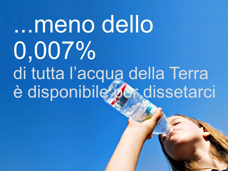 ...meno dello 0,007% di tutta l'acqua della Terra