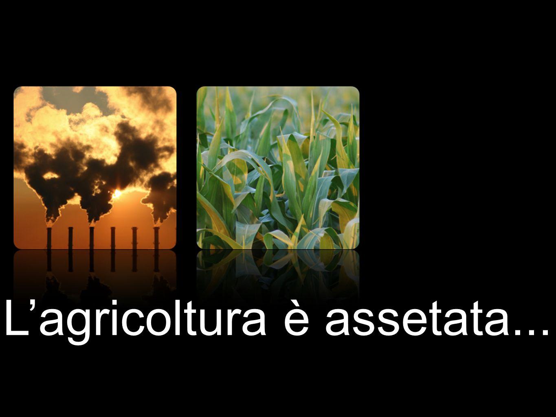 L'agricoltura è assetata...