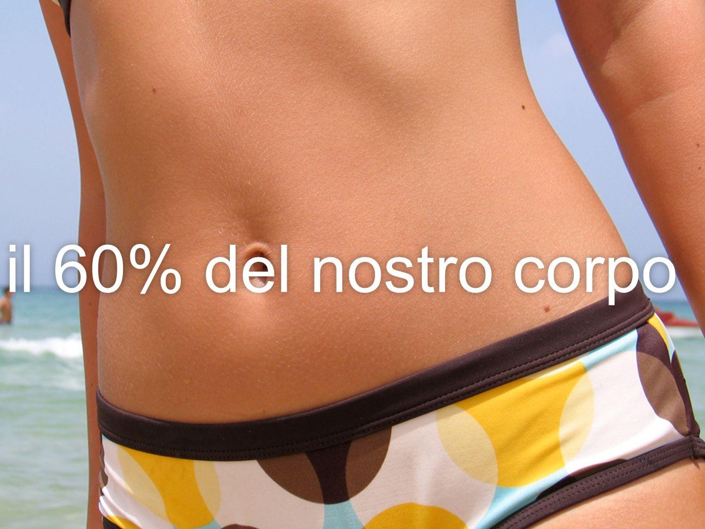il 60% del nostro corpo
