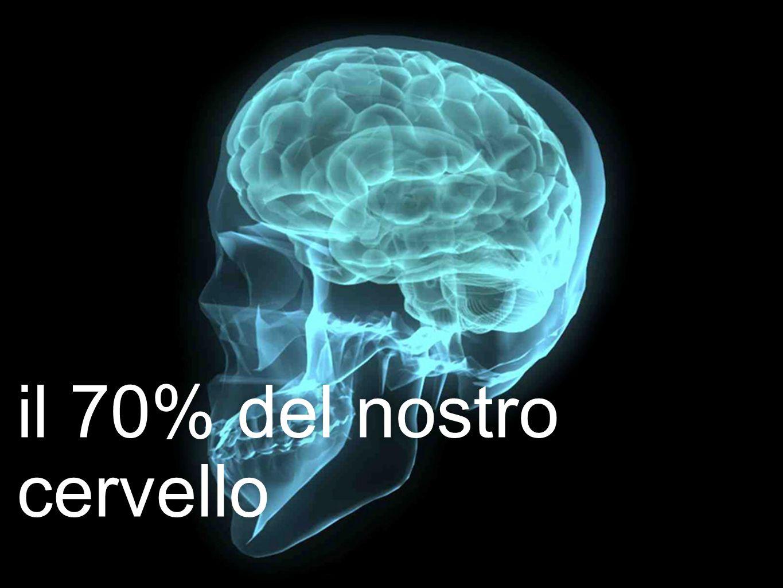 il 70% del nostro cervello