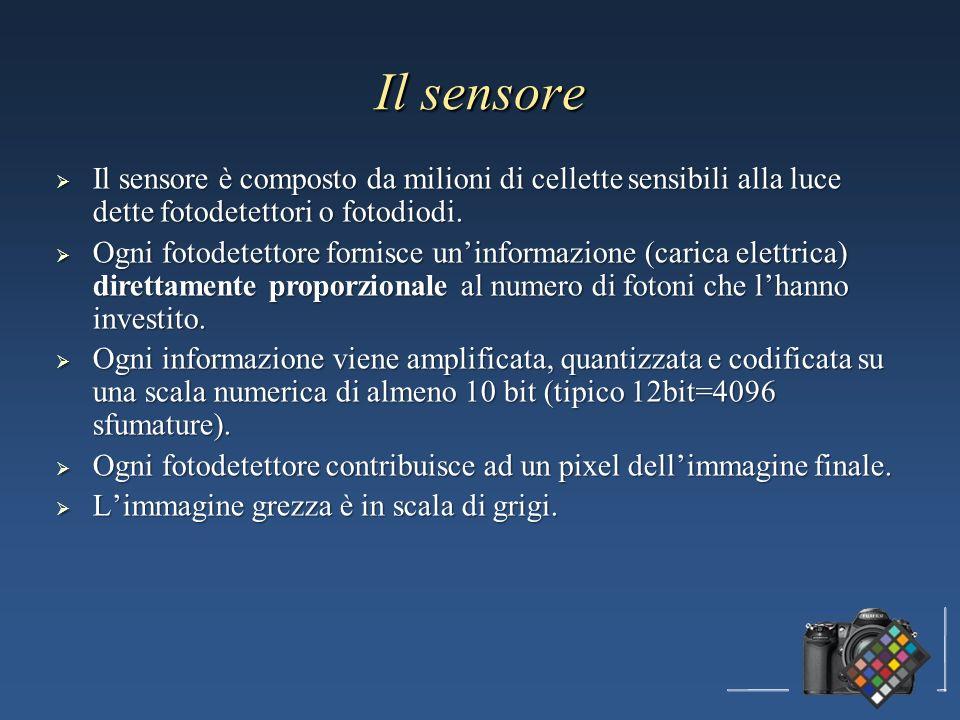 Il sensore Il sensore è composto da milioni di cellette sensibili alla luce dette fotodetettori o fotodiodi.