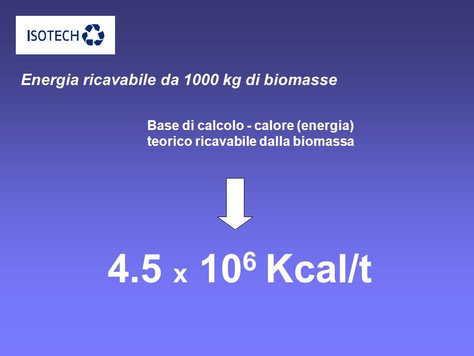 4.5 x 106 Kcal/t Energia ricavabile da 1000 kg di biomasse