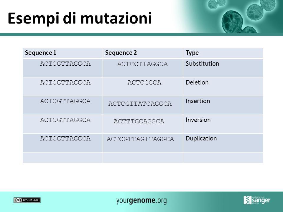 Esempi di mutazioni ACTCGTTAGGCA ACTCCTTAGGCA ACTCGTTAGGCA ACTCGGCA
