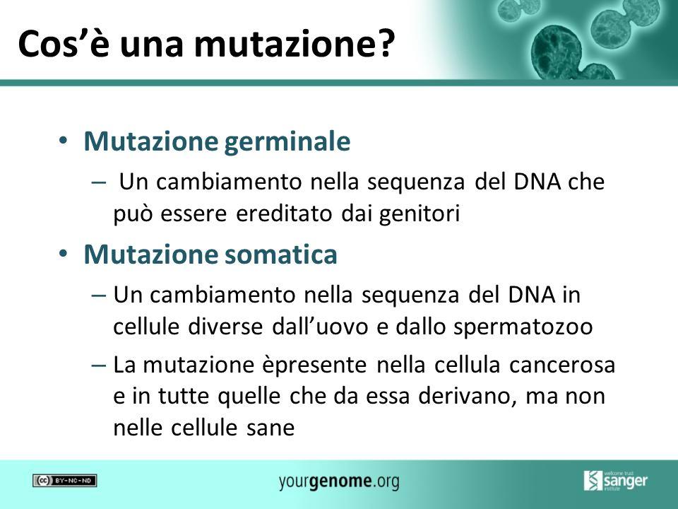 Cos'è una mutazione Mutazione germinale Mutazione somatica