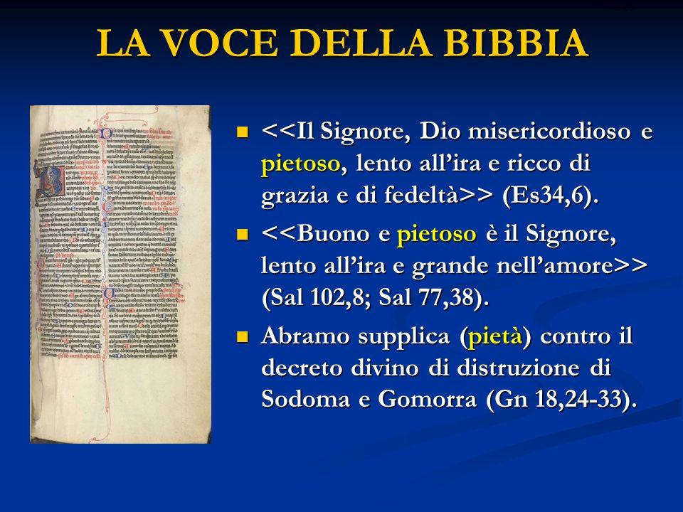LA VOCE DELLA BIBBIA ritardo. <<Il Signore, Dio misericordioso e pietoso, lento all'ira e ricco di grazia e di fedeltà>> (Es34,6).