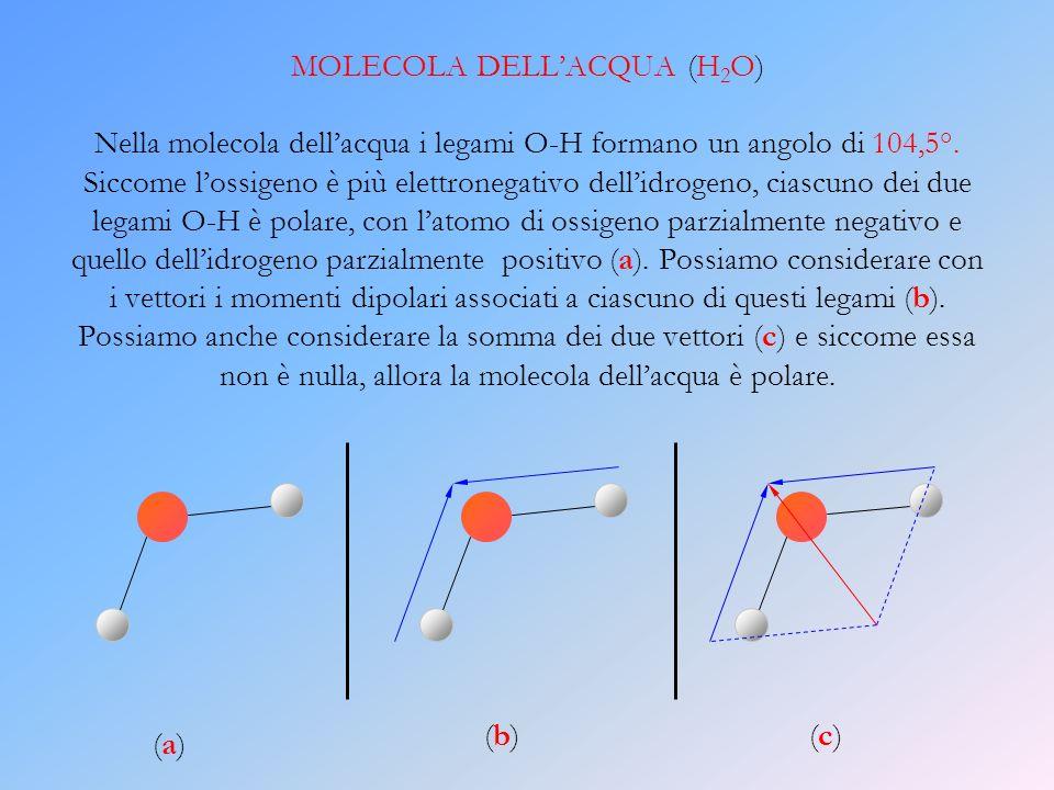 MOLECOLA DELL'ACQUA (H2O) Nella molecola dell'acqua i legami O-H formano un angolo di 104,5°. Siccome l'ossigeno è più elettronegativo dell'idrogeno, ciascuno dei due legami O-H è polare, con l'atomo di ossigeno parzialmente negativo e quello dell'idrogeno parzialmente positivo (a). Possiamo considerare con i vettori i momenti dipolari associati a ciascuno di questi legami (b). Possiamo anche considerare la somma dei due vettori (c) e siccome essa non è nulla, allora la molecola dell'acqua è polare.