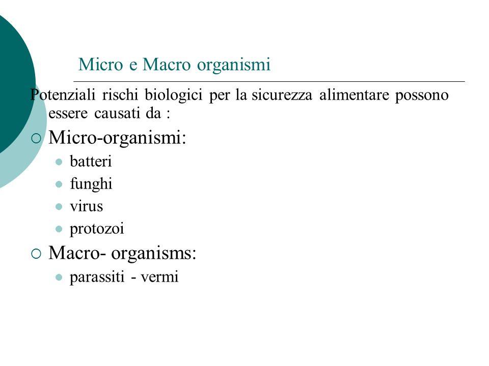 Micro e Macro organismi