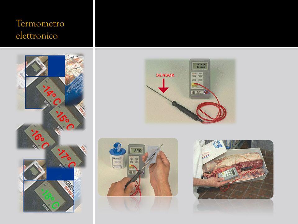 Termometro elettronico